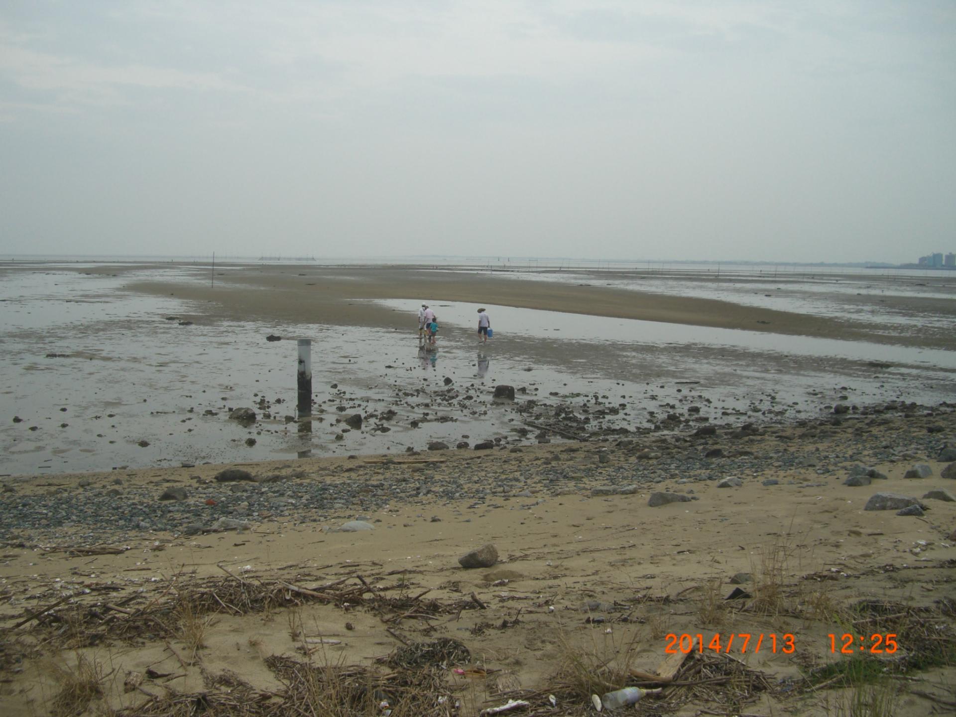 三重県 の潮干狩りや釣りに最適な潮汐・潮見表カ …