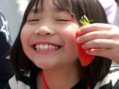 大粒のイチゴ