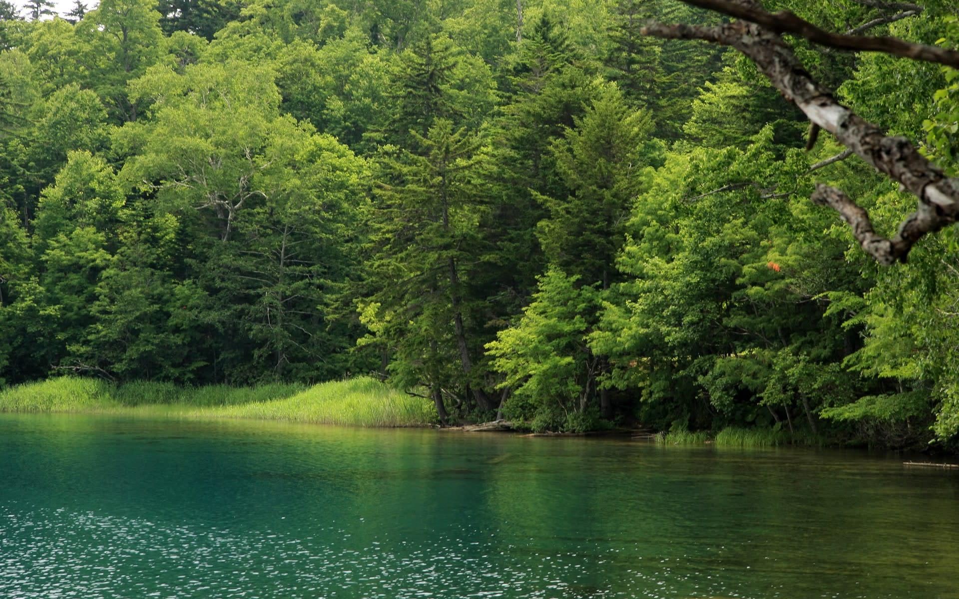 風景の画像 p1_31