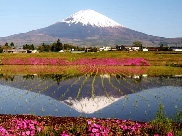 gotemba chat Mingle2 is the place to meet gotemba singles there are thousands of men and women looking for love or friendship in gotemba, shizuoka our free online dating site & mobile apps are full of single women and men in gotemba looking for serious relationships, a little online flirtation, or new friends to go out with.