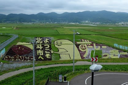 その下に見える\u201c田んぼアート\u201d...見事です。水田約70アールに5種類の稲で、北斗市公式キャラクターの「ずーしーほっきー」や、道南生まれのブランド米「