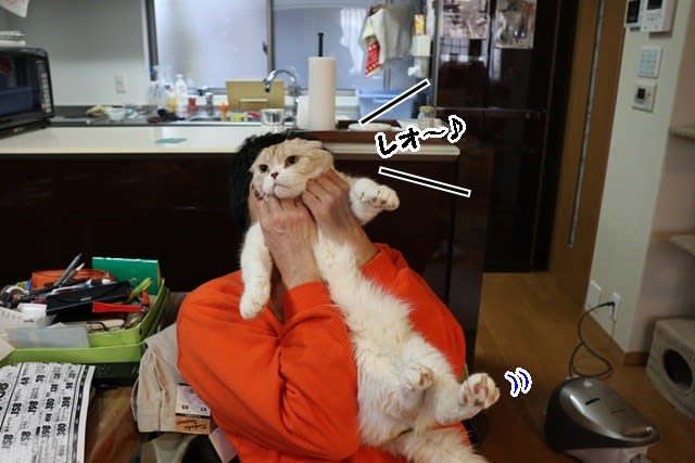 G.W終盤の猫達&5月の体重測定~♪