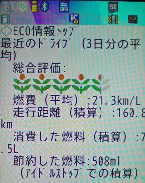 携帯電話向けWebサイト内の緑のリーフ