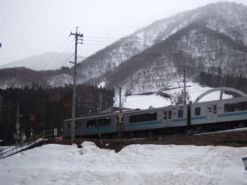 2010331_028