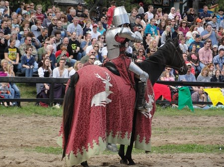 馬上槍試合 - Tournament (medieval)