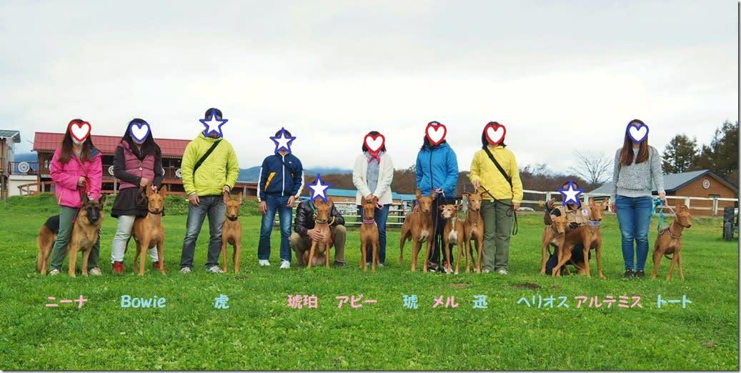 八ヶ岳滝沢牧場コーシング20161023_4516-2