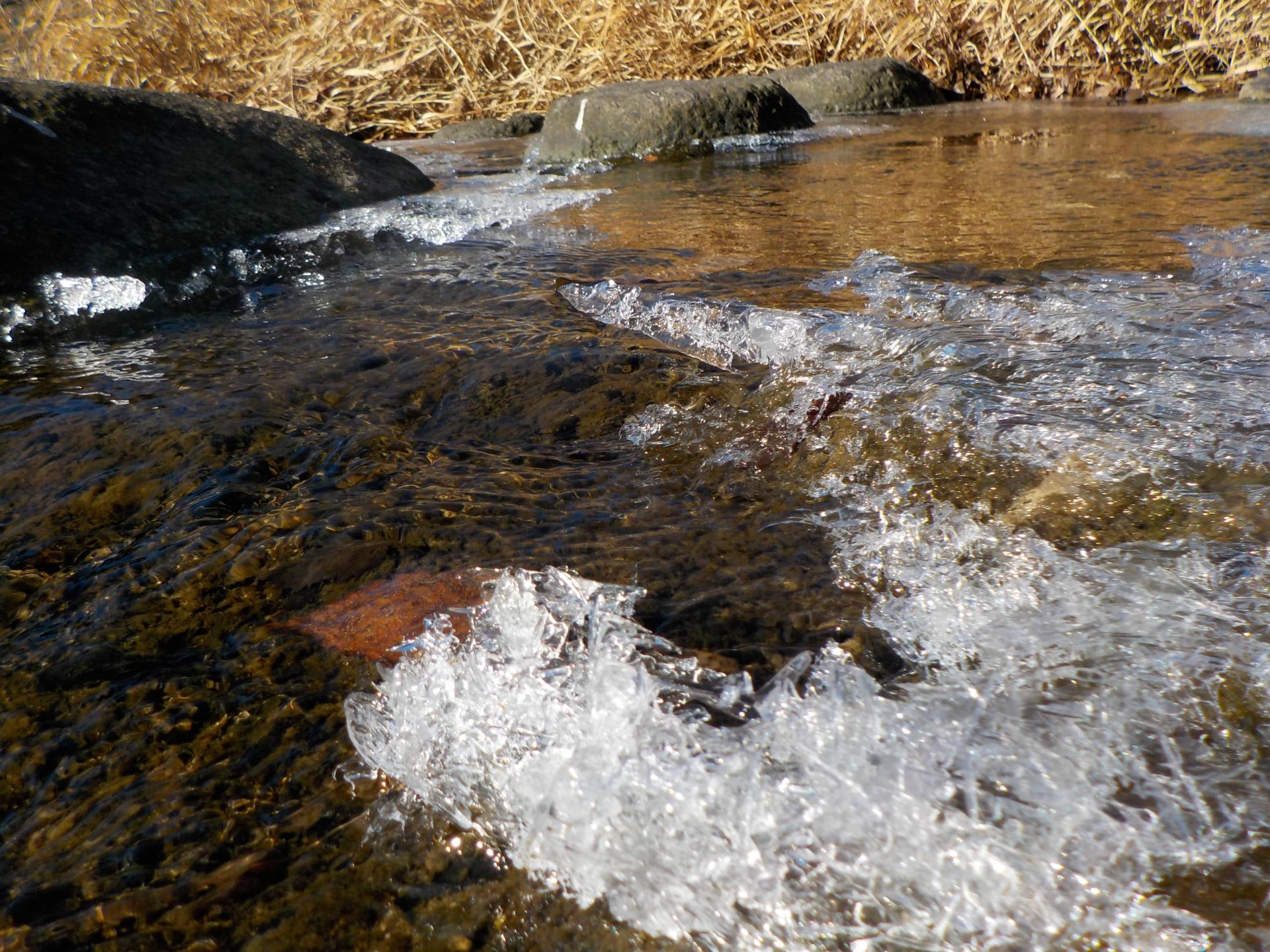 1月9日 月待の滝シガ凍結が見ら...
