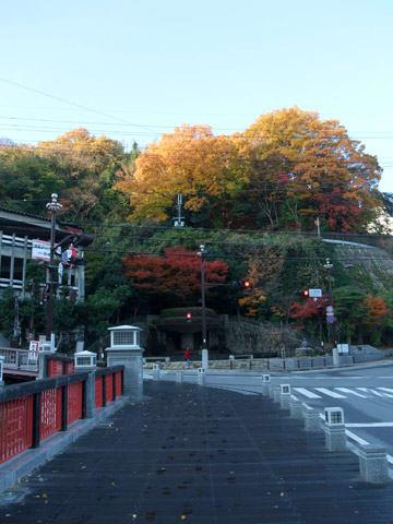 太閤橋の紅葉