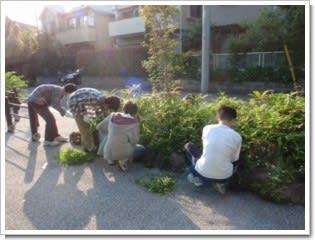 植え込みの笹刈