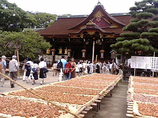京都、天神市に来ています。