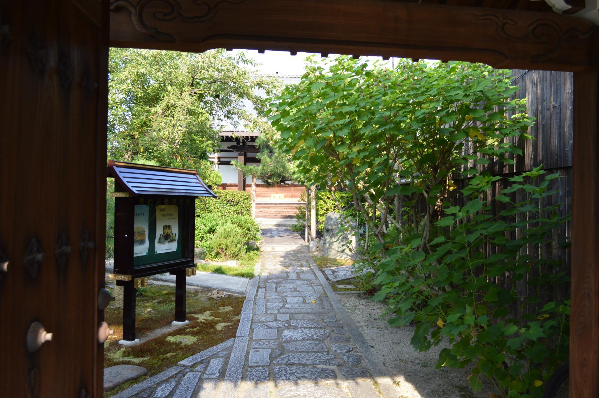 横山華山の画像 p1_23