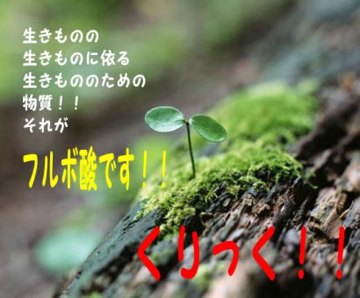 New_2