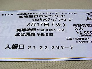 内野特別席のチケット