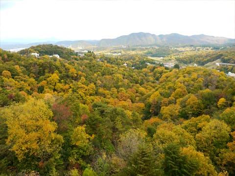龍泉閣からの景色