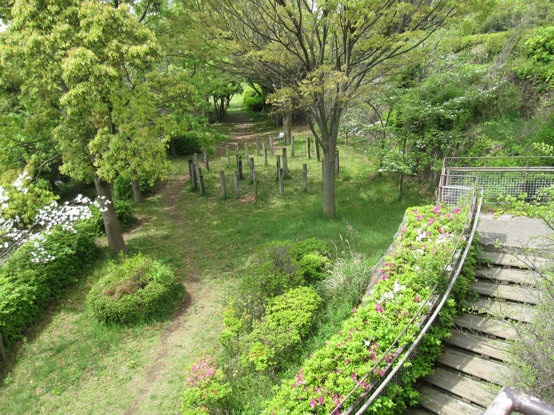 下村観山の画像 p1_34