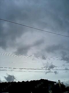 Taifu13