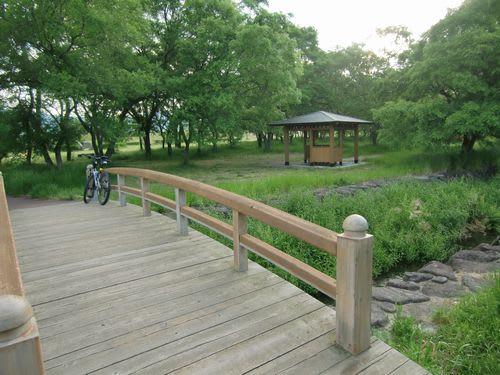 今朝は柳原泉へ - 自転車で野山 ...