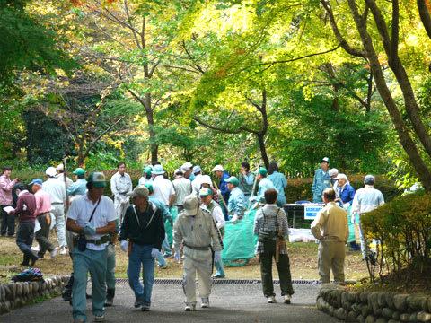 瑞宝寺公園の清掃