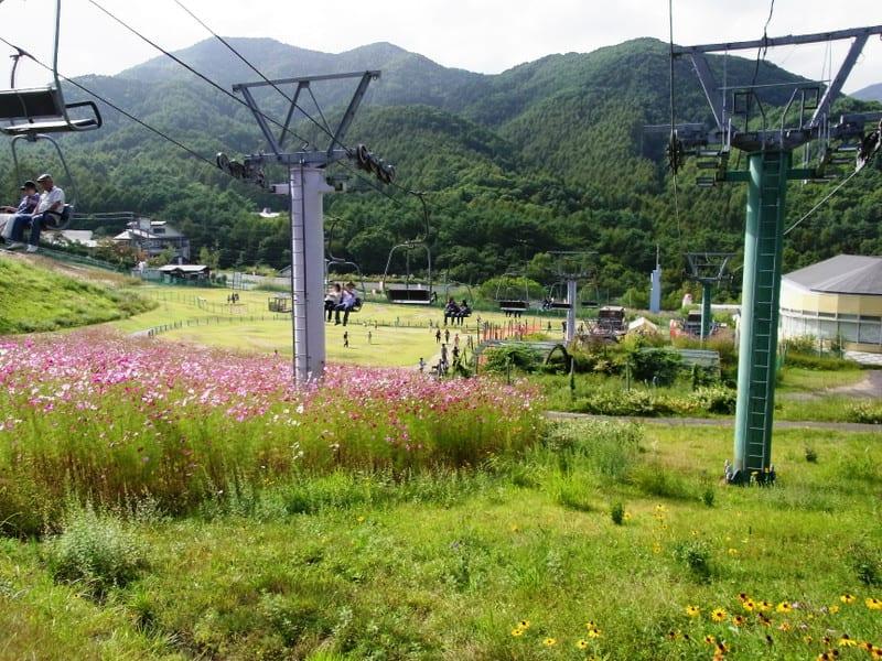 Jibuzaka201210_2