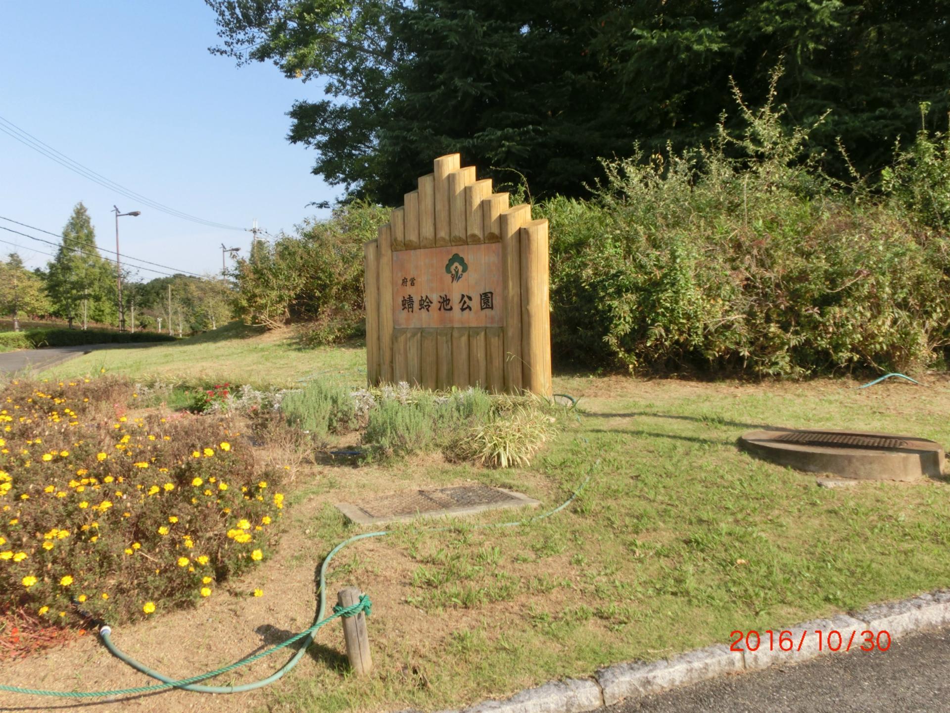 公園 蜻蛉 池