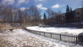 昨夜降った雪が…