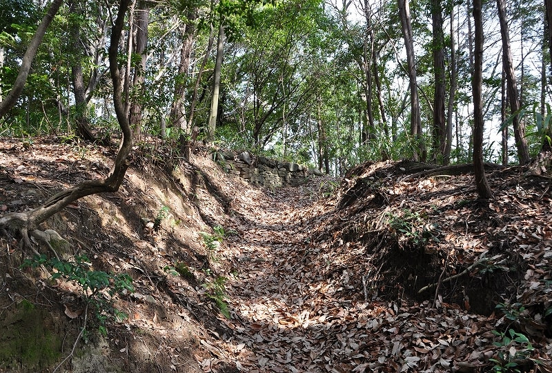 後円部墳頂への道