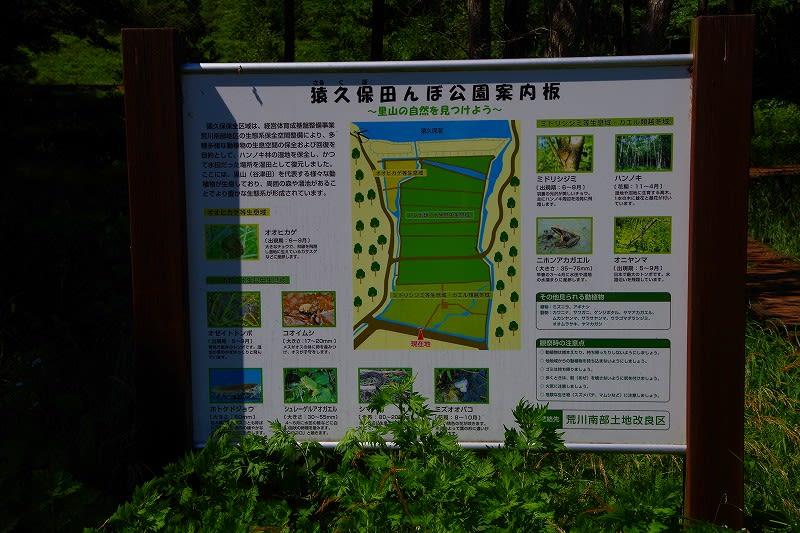 那須烏山市 猿久保田んぼ公園に車をおいて森田トンネルを見に ...