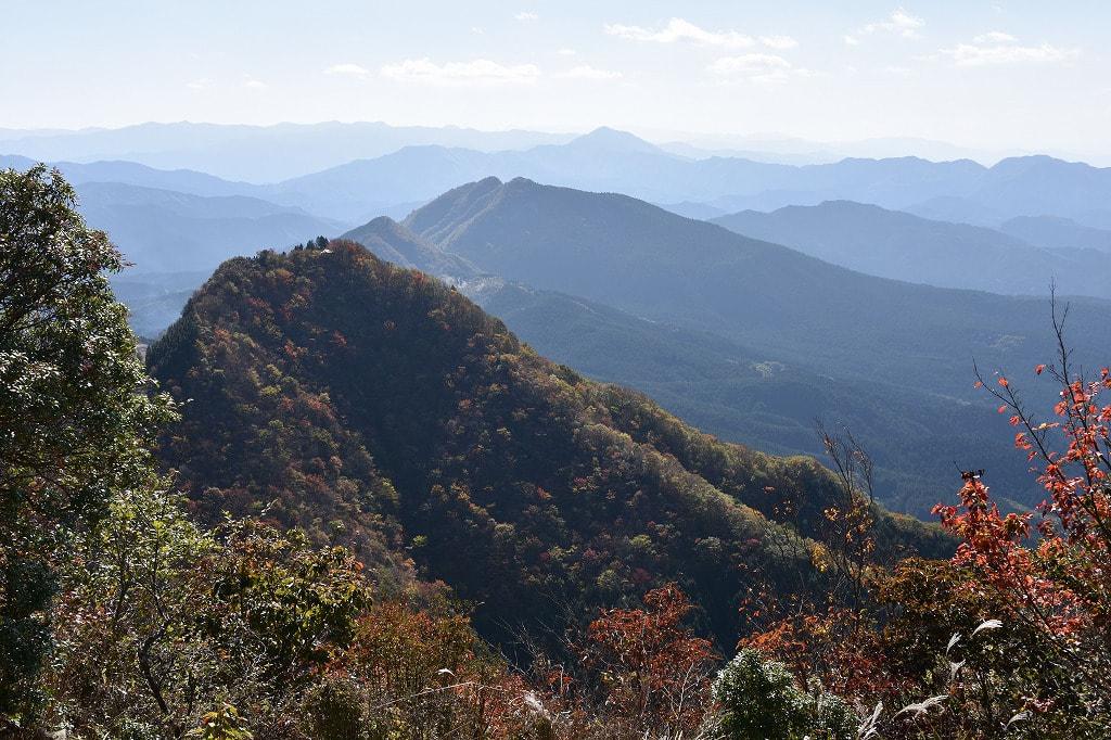 倶留尊山から見た二本ボソ