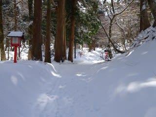 神社参道。普通に歩けます。雪の上を