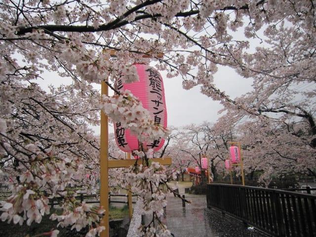 http://blogimg.goo.ne.jp/user_image/56/b8/23cb199f2fa2b3a50270c397c15b1af8.jpg