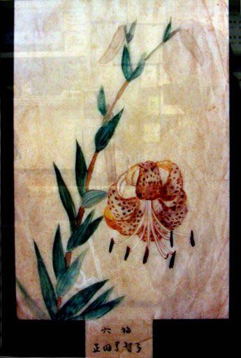 これって皇后 美智子様の絵画(水彩画)ではないか? 昔、群馬県の地方紙... 皇后 美智子様の絵
