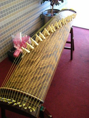 17 string bass koto