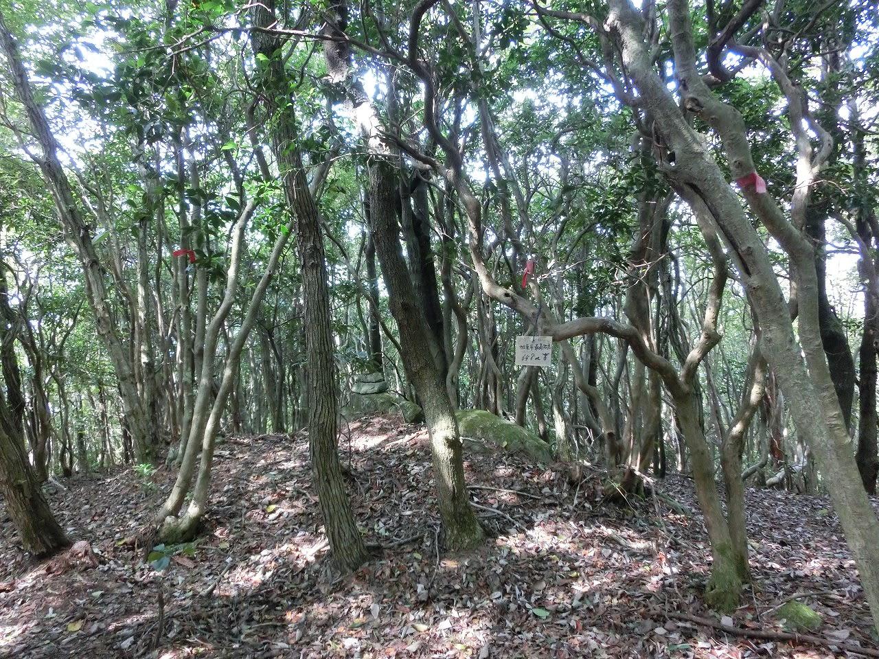西光寺山から加東神山へ - JM3AV...