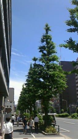 和田一浩の画像 p1_32