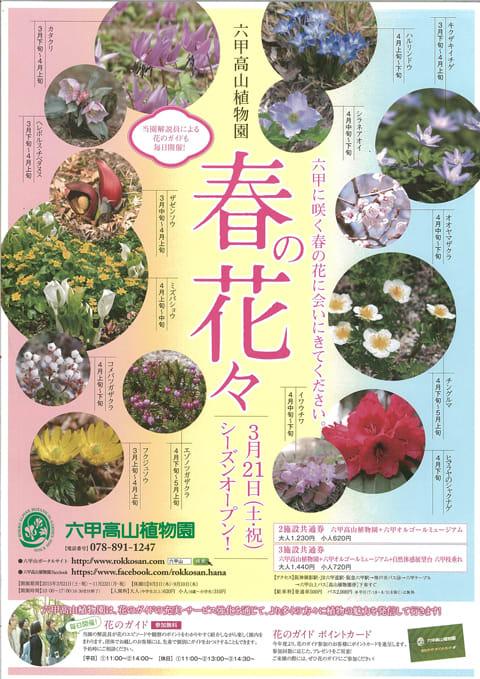 六甲高山植物園 春季オープン