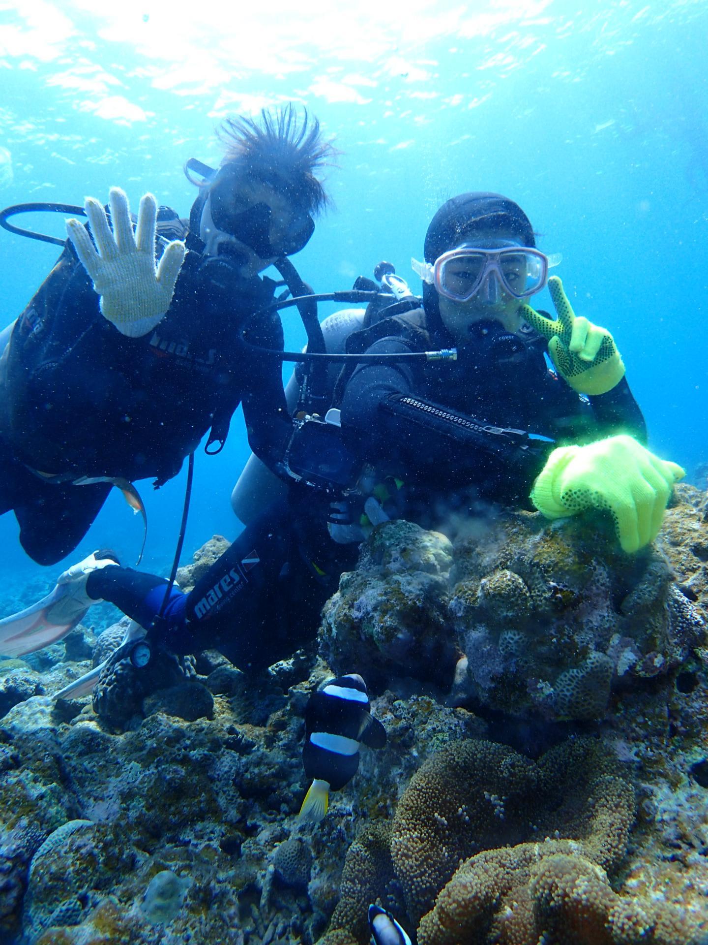 石垣島シーフレンズの体験ダイビング日記