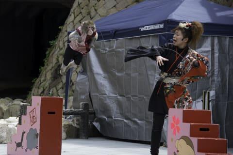 有馬温泉さくらまつり 神戸モンキーズショー