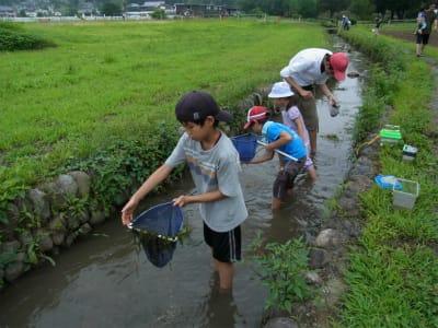Srimg193620120715ogawanoikimonosaga