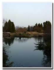 夕暮れの池