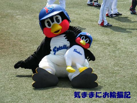 つば九郎の画像 p1_10