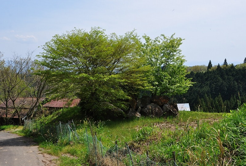 入山道前にある石塊