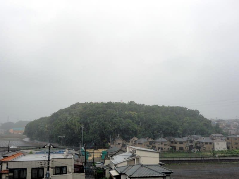 05月29日 雨の根岸台