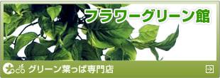 造花ココーフラワー横浜 グリーン館