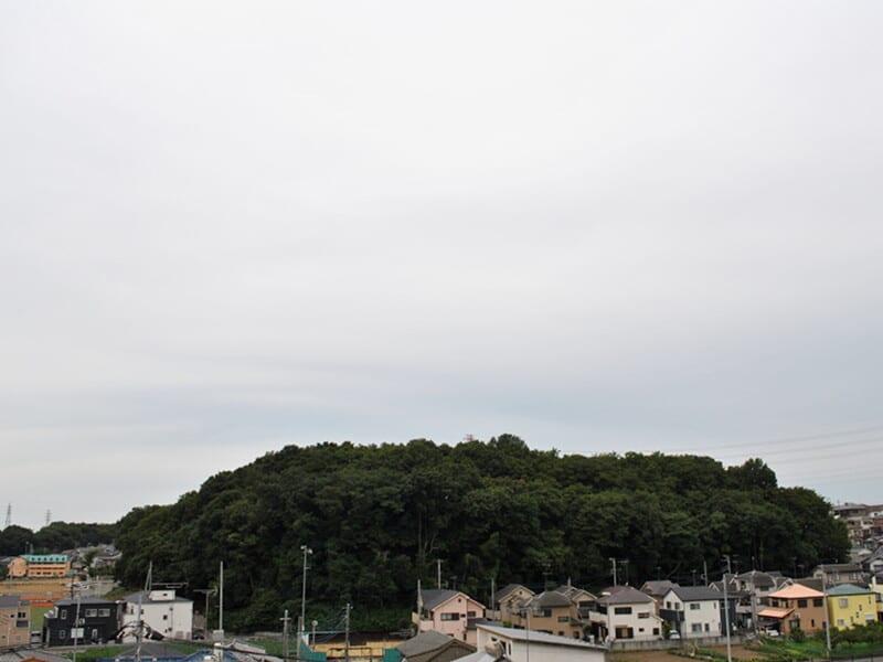 07月23日 根岸台