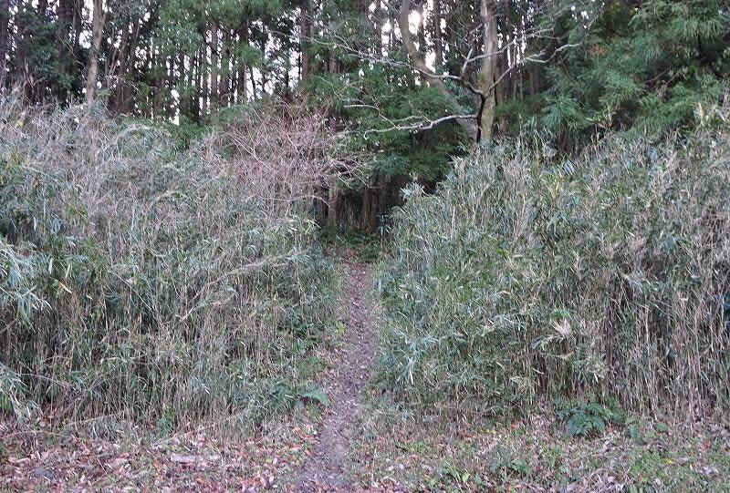 弥宮池西古墳登山道入口