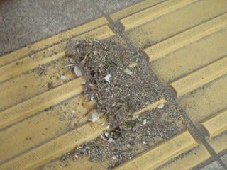 砂2(回収後。箒と打つと伯耆町と出る変換学習機能付きのPC)