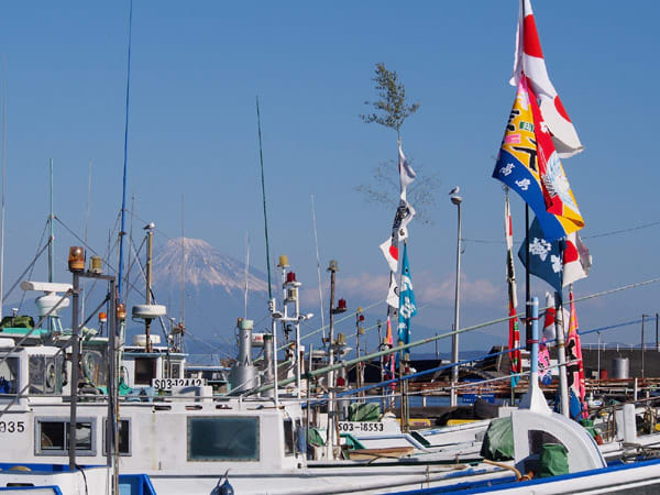 小川港の富士1