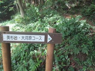 http://blogimg.goo.ne.jp/user_image/5a/88/90cd5220291d87006c6231233f67c67e.jpg