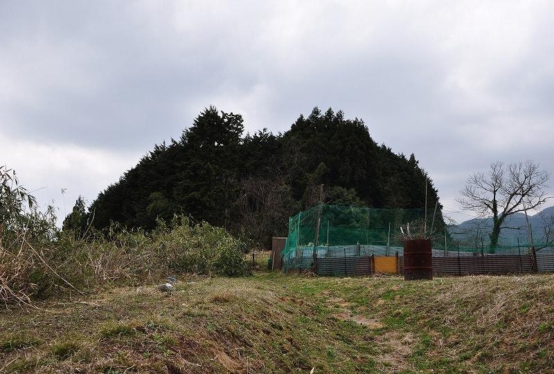 北谷古墳群の森