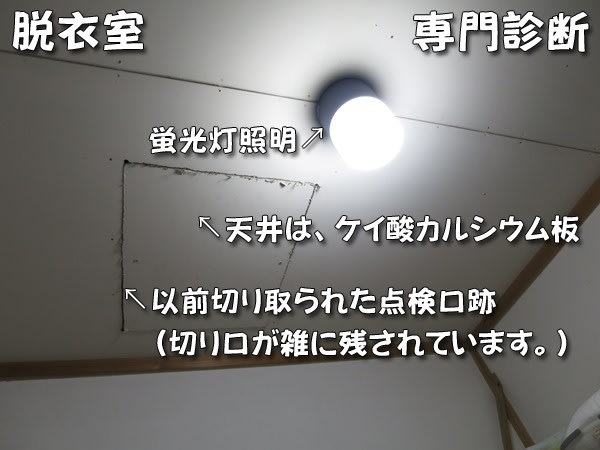洗面脱衣室の天井